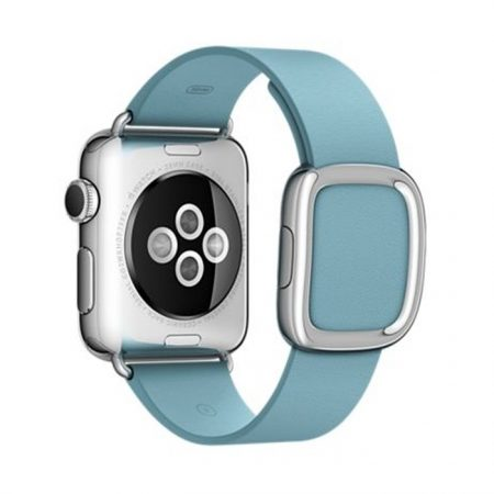 Apple Watch MMFC2 38mm Stainless Steel Case with Blue Jay Modern Buckle (Large)